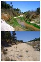 Plan hidrológico forestal y de protección de cauces